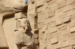 Sphinx al tempiale di Karnak. Fotografie Stock