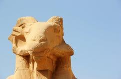 Sphinx al tempiale di Karnak. Immagine Stock