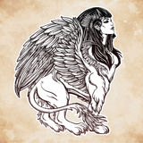 Sphinx, beautiful ancient beast illustation. Stock Images