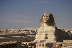 The Sphinx, Cairo. The great egyptian Sphinx of Giza, Egypt Stock Image