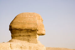 Sphinx close up at cairo Egypt Stock Images