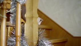 Sphinx de chat se cachant sur les escaliers banque de vidéos