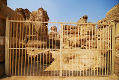 Sphinx de Giza Image libre de droits