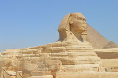 Sphinx de Giza Imagens de Stock