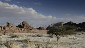 Sphinx der Wüste, Israel stock video