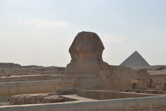 Sphinx e pirâmide Fotos de Stock