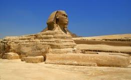 Sphinx egiziano Fotografie Stock