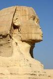 Sphinx egiziano   Fotografia Stock Libera da Diritti