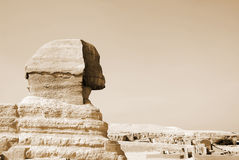 Sphinx egiziano a Cairo Fotografie Stock Libere da Diritti