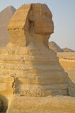Sphinx , Egypt. Royalty Free Stock Photography