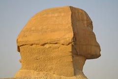 Sphinx , Egypt. Stock Images