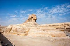 Sphinx. Egypt Stock Photography