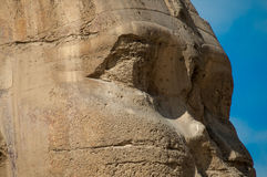 The sphinx in Egypt. Particular the sphinx in Egypt Stock Image