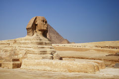 Sphinx em Giza Fotos de Stock Royalty Free