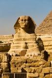 Sphinx Front Corner Pyramid Empty Stock Image