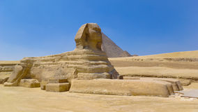 Sphinx in Giza Stockfotos