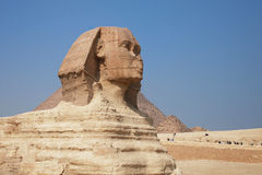 Sphinx of Giza. The great egyptian Sphinx of Giza with ancient pyramids on the background Stock Photos