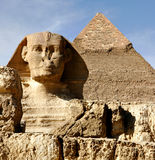 Sphinx in Giza Lizenzfreies Stockbild
