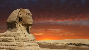 Sphinx, Giza, Cairo Egypt Travel, Sunrise, Sunset stock footage