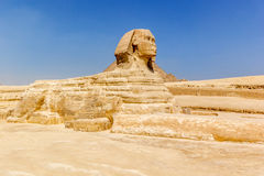 Sphinx Giza Egypt Stock Images