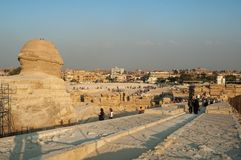 Sphinx Gizeh, Egypte photo stock