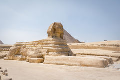 Sphinx, Gizeh, Egypte Images libres de droits