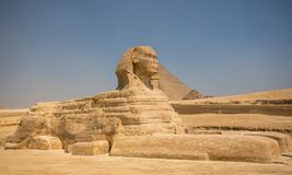 Sphinx and great pyramids Stock Photo