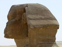 Sphinx head profile Stock Photos