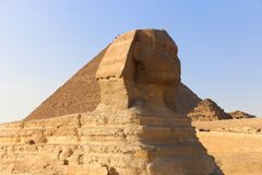 Sphinx. The iconic Sphinx carving adjacent to the Great Pyramids at Giza, Egypt Royalty Free Stock Images
