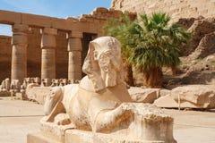 Sphinx. Karnak tempel, Luxor, Egypten Royaltyfri Bild