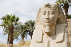 Sphinx Lane. One of the Sphinxes of the 2km long Lane of Sphinxes going from Karnak to Luxor temple. Luxor, Egypt Royalty Free Stock Image