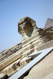 Sphinx Long Shot Stock Images