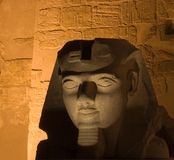 Sphinx in Luxor. Temple, Egypt Stock Photos