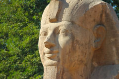 Sphinx of Memphis Stock Images
