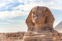 Sphinx monument against the background of large pyramids stock images