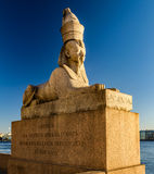 The Sphinx monument at the University embankment. Stock Images
