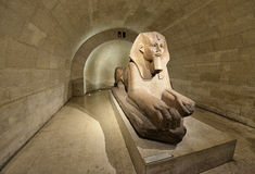 Sphinx in Museum Louvre stock image