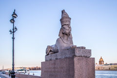 Sphinx on Neva river bank Stock Photos