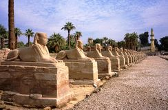 Sphinx and pharaoh of Luxor Stock Photography