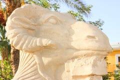Sphinx principal de Ram photo stock
