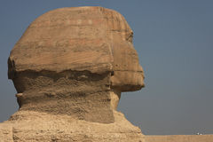 Sphinx Profile Royalty Free Stock Images