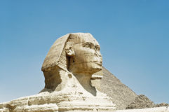 Sphinx Profile. South profile o f Sphinx, with Cheops Pyramid in the background royalty free stock images