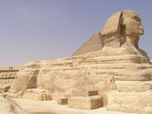 Sphinx profile. Close view of Sphinx profile of Giza (Giseh), Egypt, Africa royalty free stock image