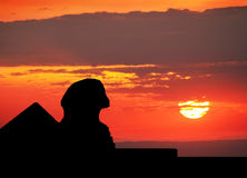 Sphinx  and Pyramid silhouette Royalty Free Stock Photo