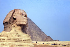 The sphinx & the pyramids Royalty Free Stock Image