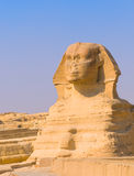 Sphinx and pyramids at Giza, Cairo Stock Photos