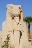 sphinx Ram-dirigido imagem de stock royalty free