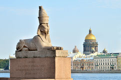 Sphinx in Saint Petersburg, Russia Royalty Free Stock Image