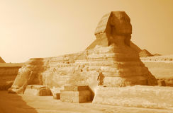 Sphinx in sepia. Nice photo of the Giza sphinx shot in sepia setting Stock Photos