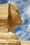 Sphinx side view Royalty Free Stock Image